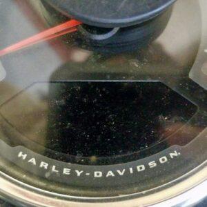HARLEY-DAVIDSON FLSL 2019