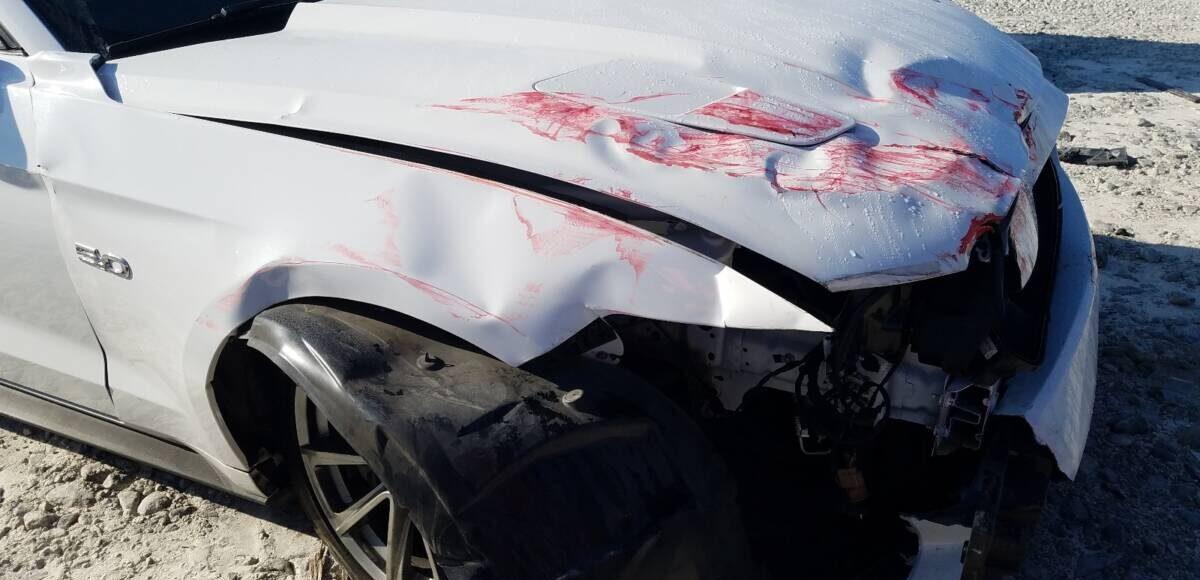 Купить 2015 FORD MUSTANG GT в Украине - 9