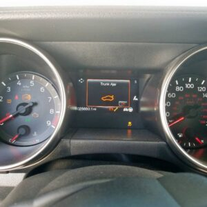 Купить 2017 FORD MUSTANG SHELBY GT350 в Украине - 8