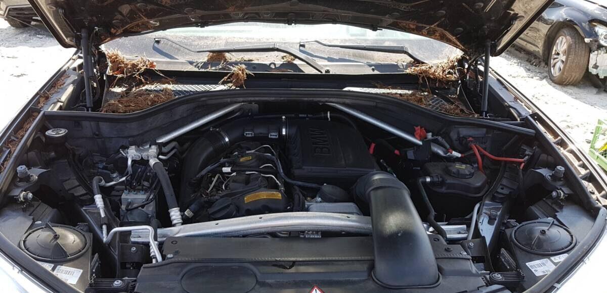 Купить 2015 BMW X5 SDRIVE35I в Украине - 7