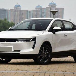Купить ORA IQ 2019 в Украине - 1